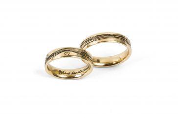 """Vestuviniai žiedai """"Apkabinti širdį"""""""